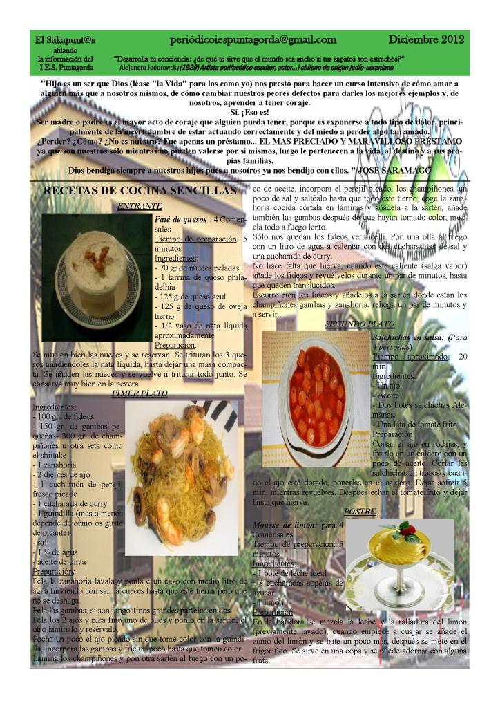 El_sakapuntas_Diciembre__2012_Page_12